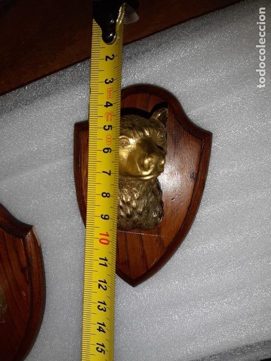 Antigüedades: DOS MINIATURAS DE TROFEOS EN BRONCE CORZO Y OSO - Foto 7 - 107686635