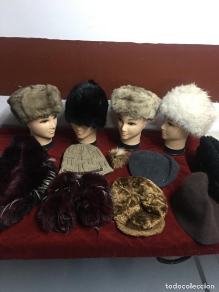 ENORME LOTE DE PIELES SIBERIANAS (Antigüedades - Moda y Complementos - Mujer)