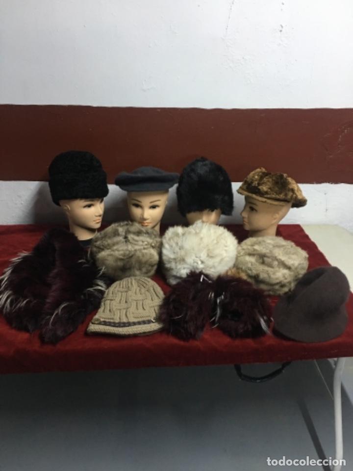Antigüedades: Enorme lote de pieles siberianas - Foto 2 - 233805850