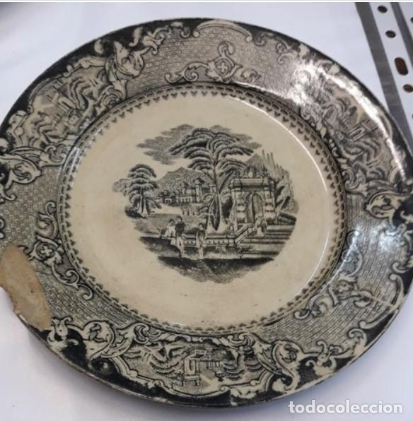 PLATO SANDEMAN MACDOUGALL. . SIGLO XIX. (Antigüedades - Porcelanas y Cerámicas - San Juan de Aznalfarache)