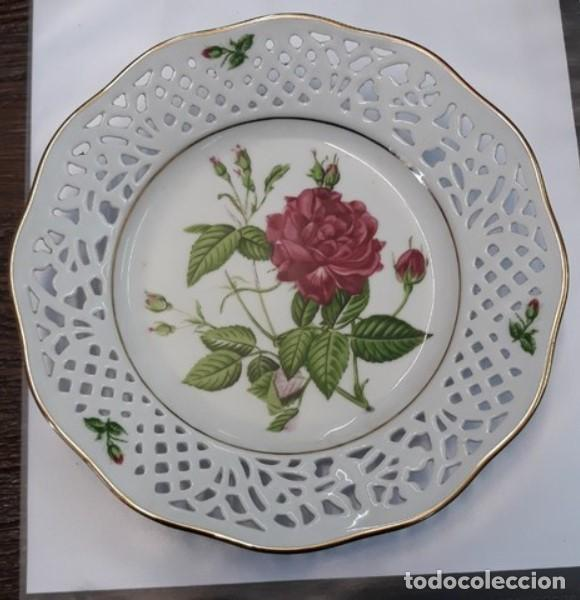 PLATO ROYAL KENT. ROSA INDICA CRUENTA (Antigüedades - Porcelana y Cerámica - Francesa - Limoges)