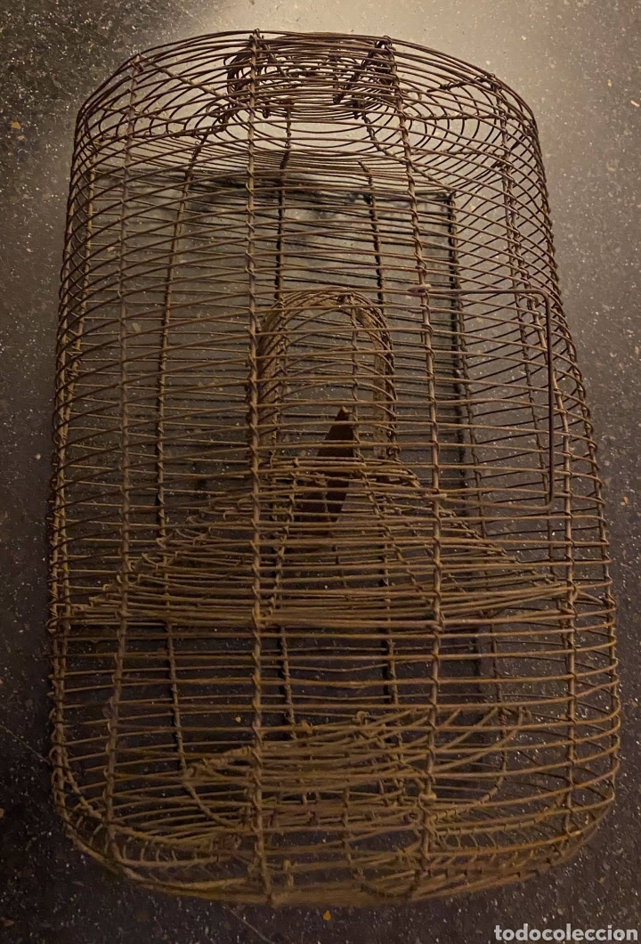 Antigüedades: ANTIQUÍSIMA RATONERA DE ALAMBRE DE GRANDES DIMENSIONES - Foto 3 - 235943705
