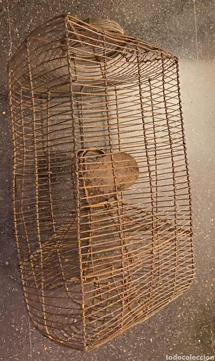 Antigüedades: ANTIQUÍSIMA RATONERA DE ALAMBRE DE GRANDES DIMENSIONES - Foto 4 - 235943705