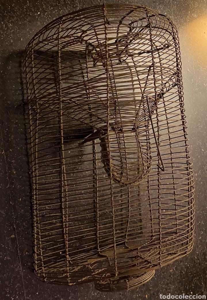 Antigüedades: ANTIQUÍSIMA RATONERA DE ALAMBRE DE GRANDES DIMENSIONES - Foto 2 - 235943705