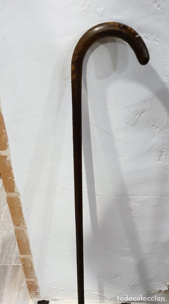 Antigüedades: BASTON GARROTA CON INCRUSTACIONES DE PLATA - Foto 4 - 236613440