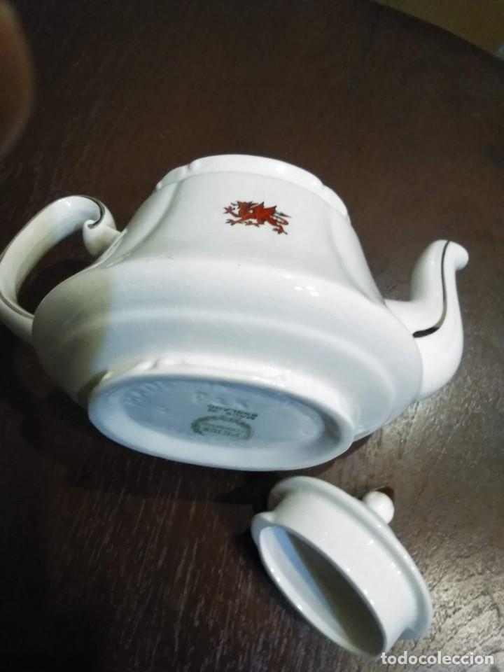 Antigüedades: Tetera - Cup teapot Price & Kensington. Made in England - Foto 7 - 188501025