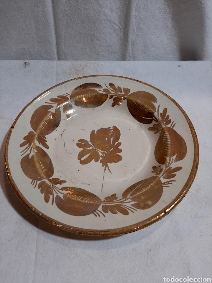 PLATO REFLEJO ALCORA S.XIX (Antigüedades - Porcelanas y Cerámicas - Alcora)