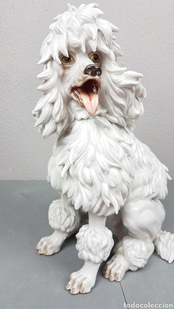Antigüedades: Bonita figura de perro de porcelana esmaltada Algora de perro años 70. - Foto 2 - 239511890