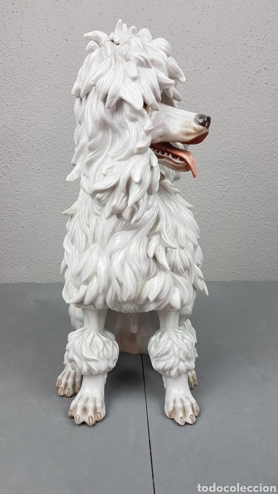 Antigüedades: Bonita figura de perro de porcelana esmaltada Algora de perro años 70. - Foto 3 - 239511890