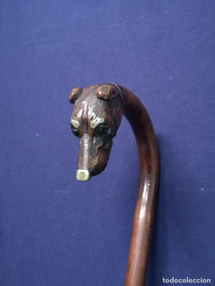Antigüedades: BASTON ANTIGUO EN MADERA - Foto 8 - 239583565