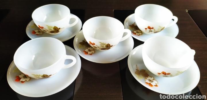 """Antigüedades: ★10 Piezas★Juego Café 5 TAZAS+ 5 PLATOS ARCOPAL """"FLOR DE ALMENDRO"""". NUEVO SIN USAR. - Foto 7 - 240167310"""