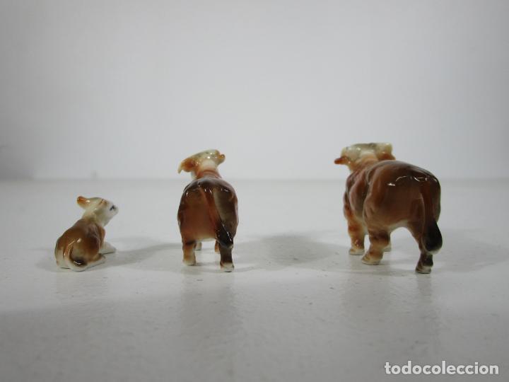 Antigüedades: Porcelana Inglesa - Vaca, Toro y Ternero Miniatura - Muy Buena Calidad - Foto 3 - 240231320