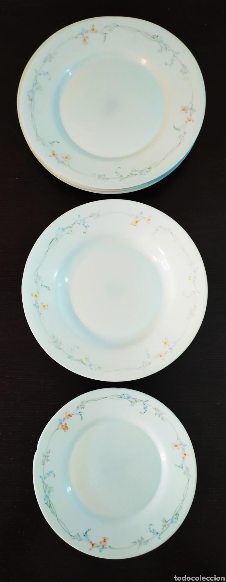 Antigüedades: ★7★ Platos Vajilla ARCOPAL de porcelana. Selladas. - Foto 2 - 240864120