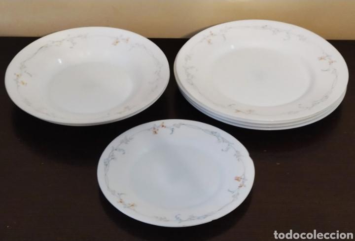 Antigüedades: ★7★ Platos Vajilla ARCOPAL de porcelana. Selladas. - Foto 4 - 240864120