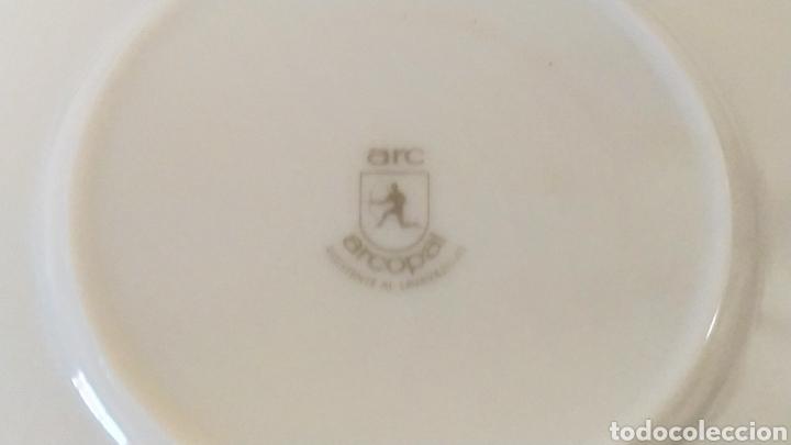 Antigüedades: ★7★ Platos Vajilla ARCOPAL de porcelana. Selladas. - Foto 6 - 240864120