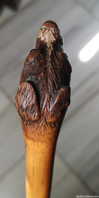 Antigüedades: Precioso bastón de bambú con cabeza tallada de perro principios del siglo XX - Foto 3 - 242314925