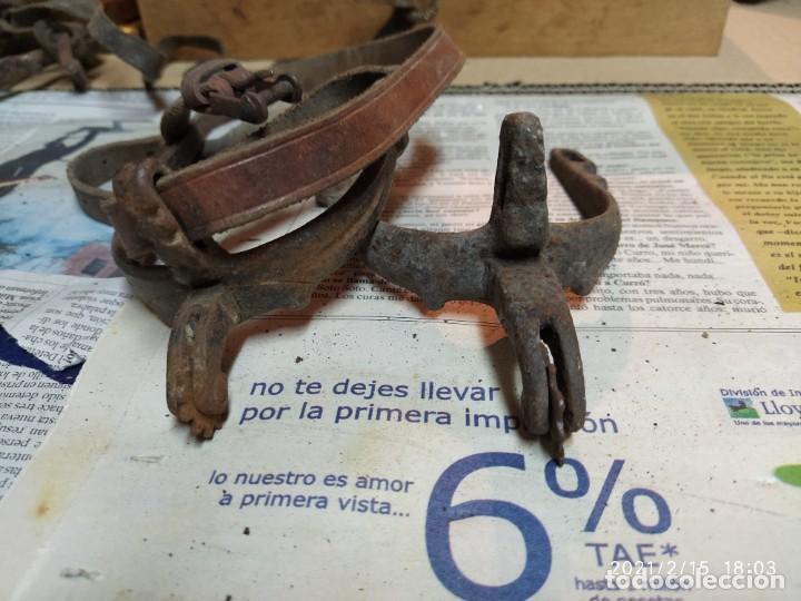 Antigüedades: Super lote de herrajes de caballo. - Foto 14 - 243617060
