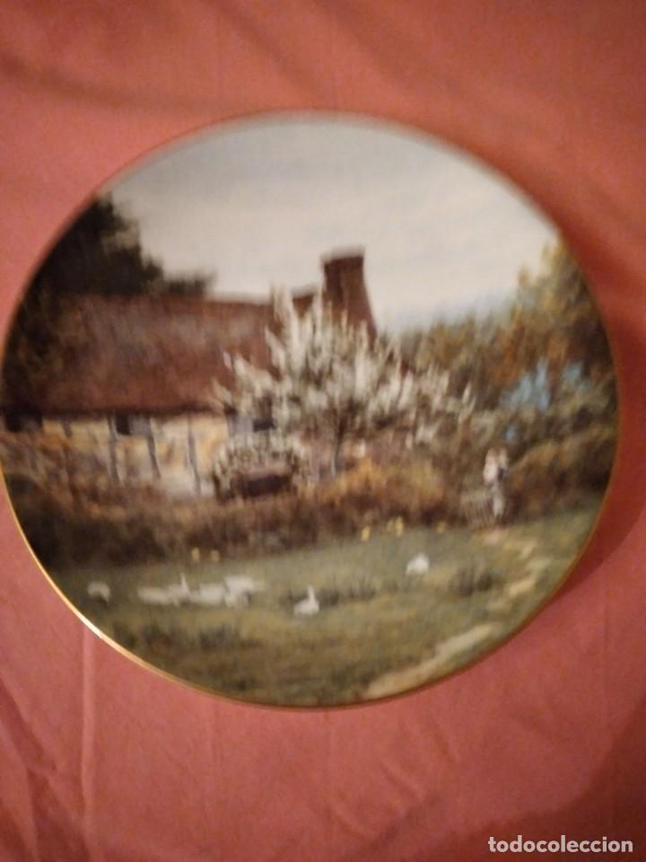 Antigüedades: Plato de porcelana coalport country cottages,gansos en el campo - Foto 2 - 244433970