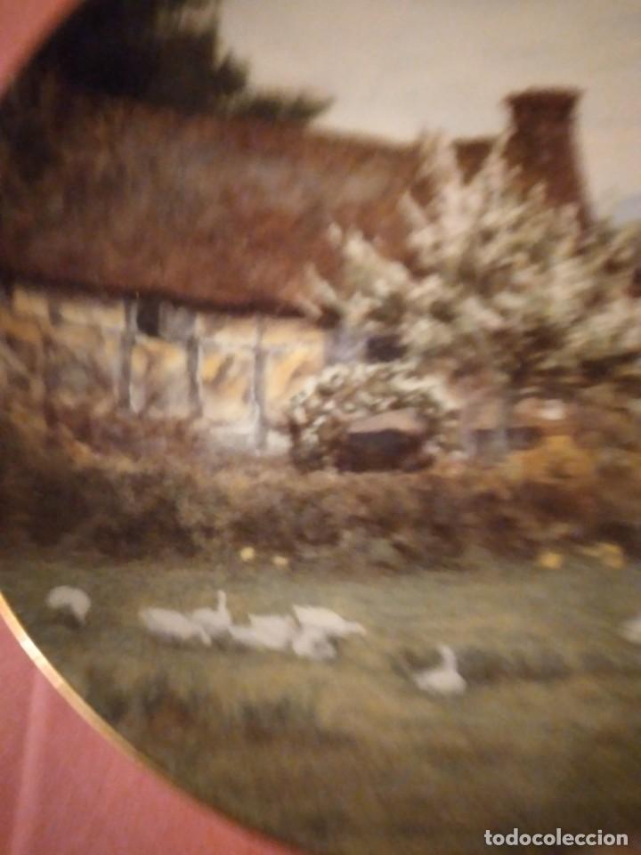 Antigüedades: Plato de porcelana coalport country cottages,gansos en el campo - Foto 4 - 244433970