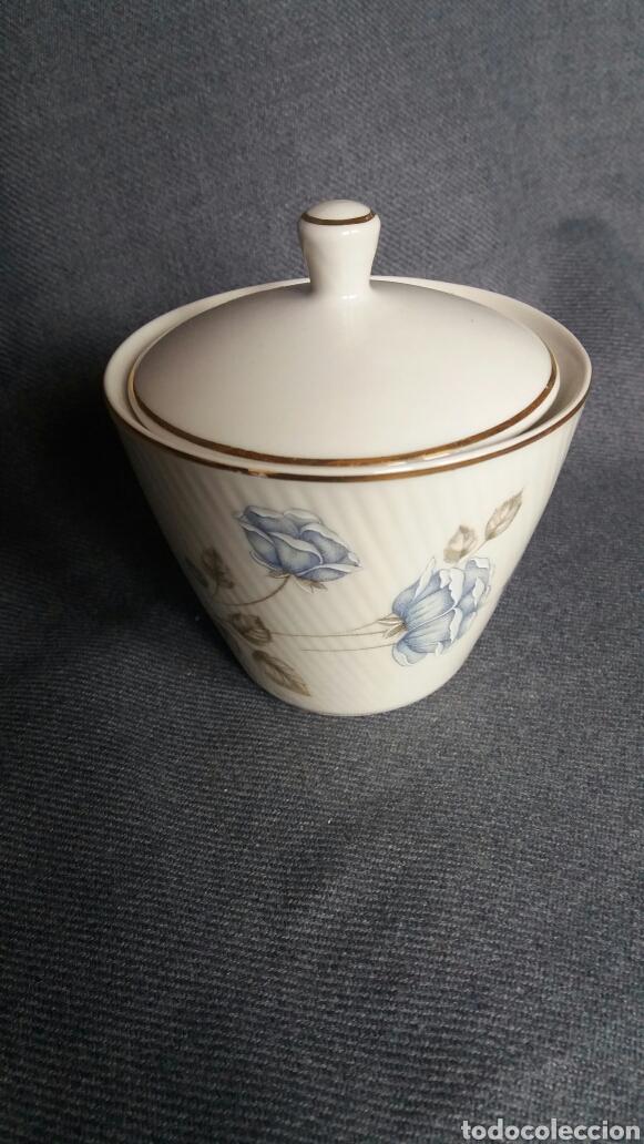 AZUCARERO DE PORCELANA SANTA CLARA (Antigüedades - Porcelanas y Cerámicas - Santa Clara)