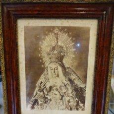 Antiguidades: GRAN FOTO ANTIGUA DE NUESTRA SEÑORA DE LA ESPERANZA (MACARENA). EN MARCO DE ÉPOCA. Lote 245017920