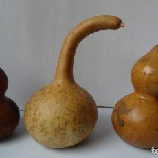 Antigüedades: CALABAZAS ANTIGUAS DECORACION. Lote 235309800