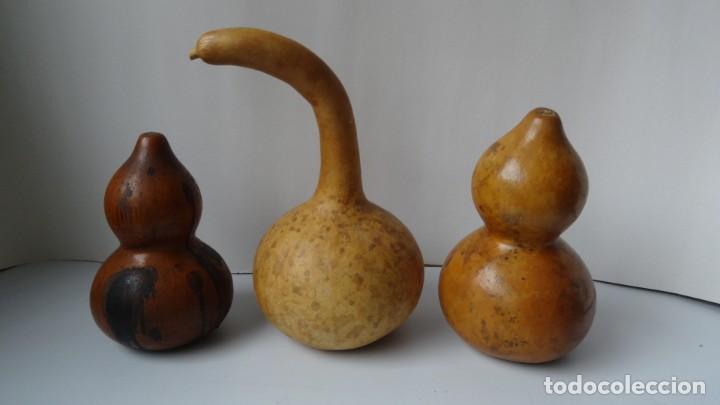 Antigüedades: CALABAZAS ANTIGUAS DECORACION - Foto 2 - 235309800