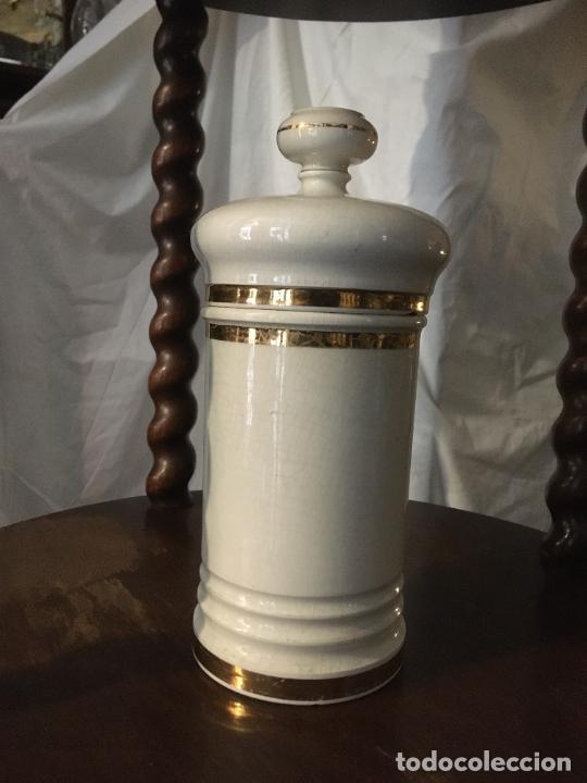 Antigüedades: Doce albarelos Isabelinos en cerámica blanca farmacia botica.Letras posteriores.24 x 10,5 cms - Foto 8 - 246074425