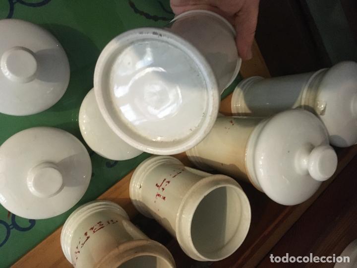 Antigüedades: Doce albarelos Isabelinos en cerámica blanca farmacia botica.Letras posteriores.24 x 10,5 cms - Foto 11 - 246074425