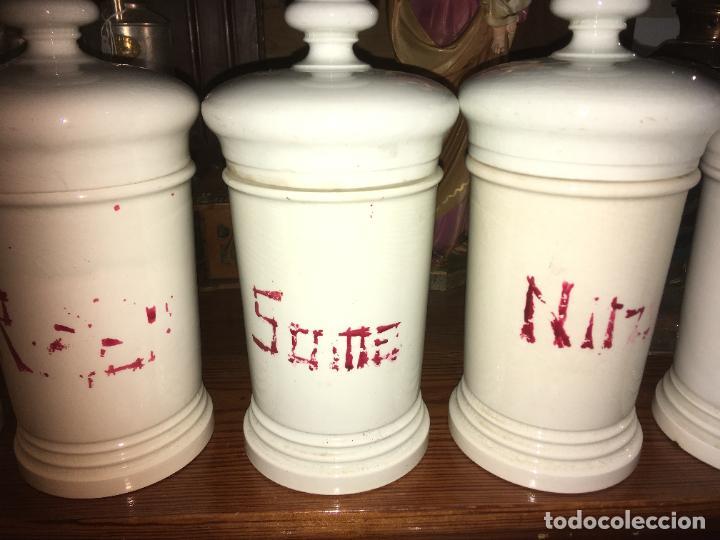 Antigüedades: Doce albarelos Isabelinos en cerámica blanca farmacia botica.Letras posteriores.24 x 10,5 cms - Foto 12 - 246074425