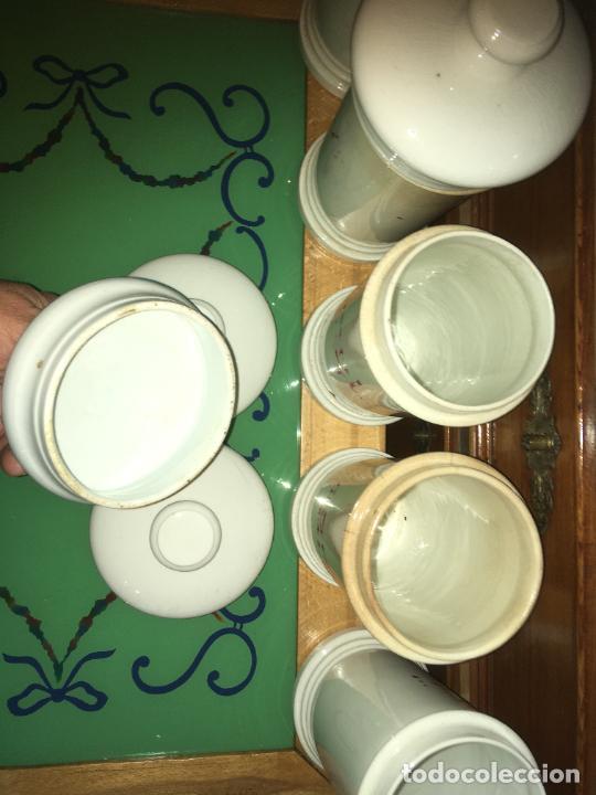 Antigüedades: Doce albarelos Isabelinos en cerámica blanca farmacia botica.Letras posteriores.24 x 10,5 cms - Foto 17 - 246074425