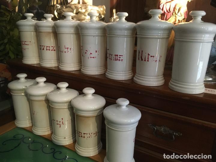 DOCE ALBARELOS ISABELINOS EN CERÁMICA BLANCA FARMACIA BOTICA.LETRAS POSTERIORES.24 X 10,5 CMS (Antigüedades - Porcelanas y Cerámicas - Otras)