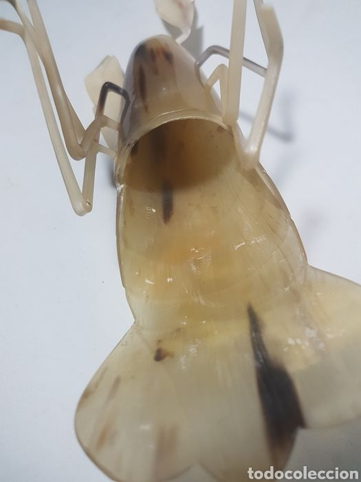 Antigüedades: Langosta tallada en asta de Cebú taxidermia - Foto 4 - 247811895
