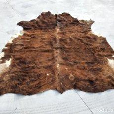 Antigüedades: EXTRAORDINARIA ALFOMBRA DE PIEL DE VACA, ORIGINAL PRECIOSOS TONOS MARRONES.. Lote 251058165