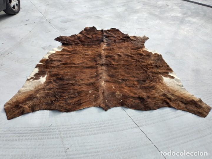 Antigüedades: Extraordinaria alfombra de piel de vaca, original preciosos tonos marrones. - Foto 3 - 251058165