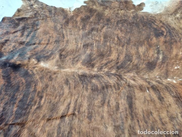 Antigüedades: Extraordinaria alfombra de piel de vaca, original preciosos tonos marrones. - Foto 7 - 251058165