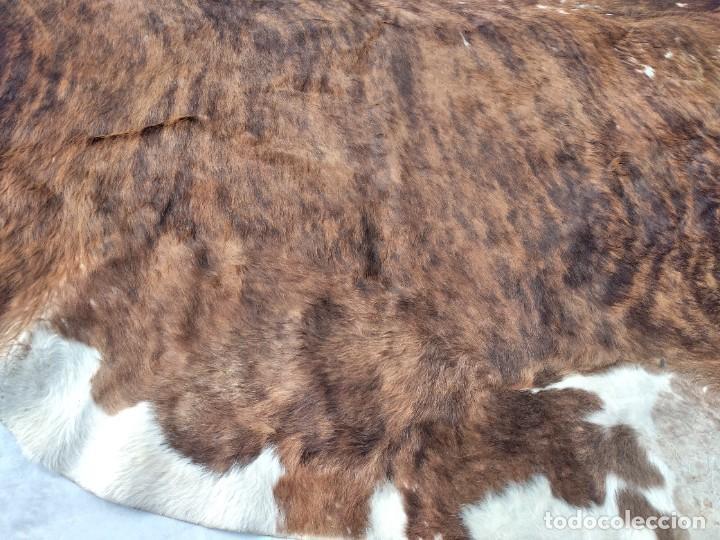 Antigüedades: Extraordinaria alfombra de piel de vaca, original preciosos tonos marrones. - Foto 8 - 251058165