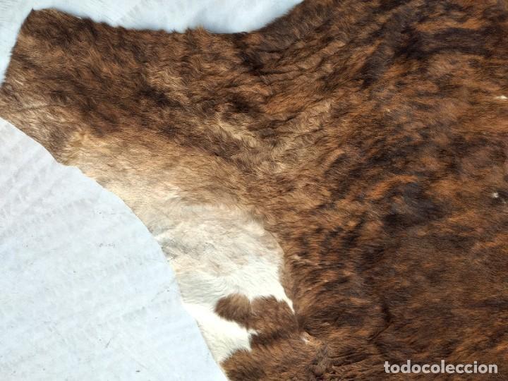 Antigüedades: Extraordinaria alfombra de piel de vaca, original preciosos tonos marrones. - Foto 11 - 251058165