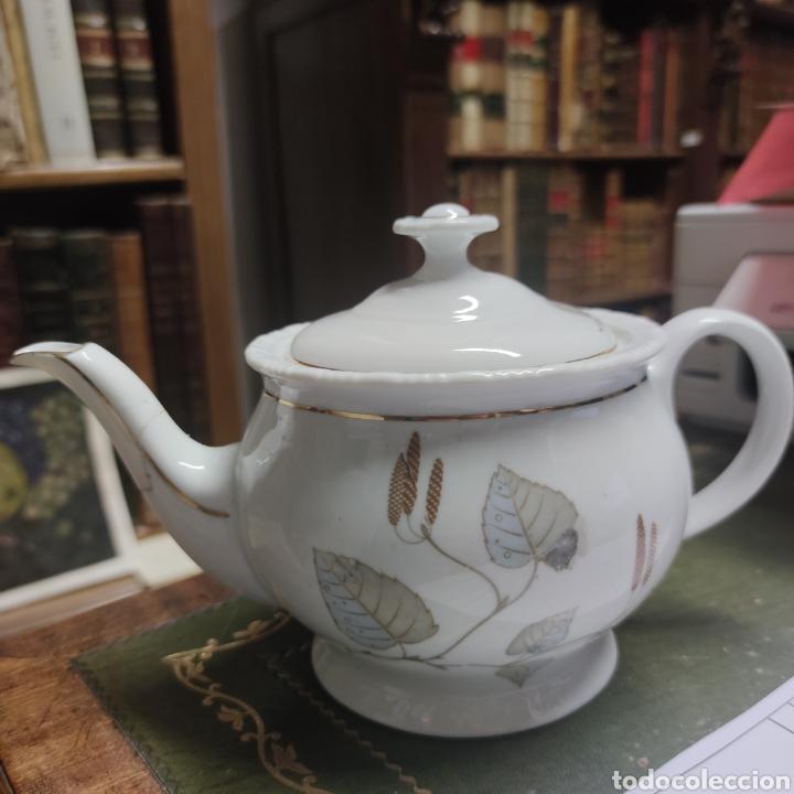 Antigüedades: Juego de café o té de porcelana Santa Clara. Vigo. 6 tazas. 5 platos. Tetera, azucarero, jarrita lec - Foto 9 - 252208045