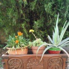 Antigüedades: ANTIGUA JARDINERA, MACETERO DE NOGAL TALLADO A MANO.. Lote 254607805