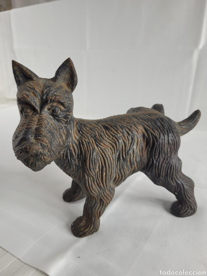 Antigüedades: Terrier sujeta Puertas año aprox 1940 - Foto 2 - 254742615