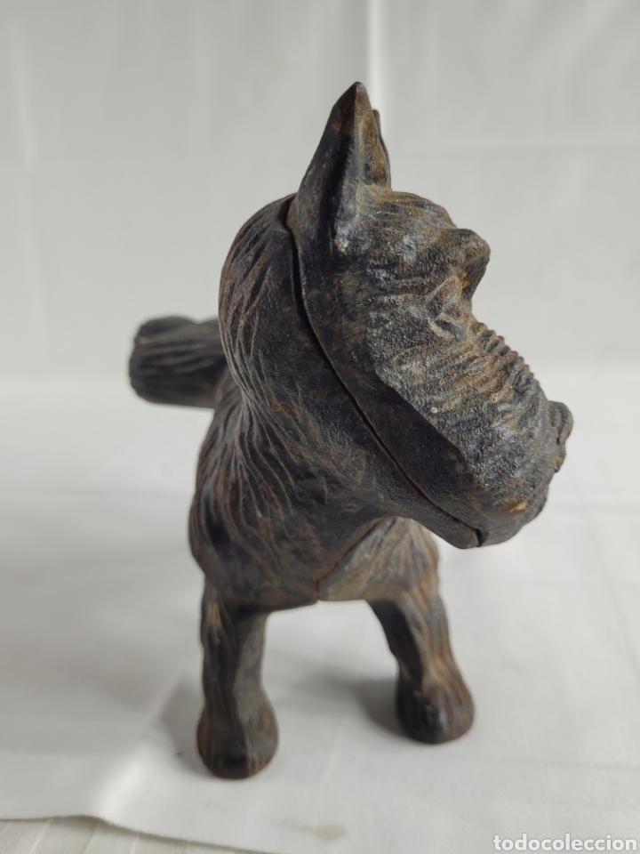 Antigüedades: Terrier sujeta Puertas año aprox 1940 - Foto 3 - 254742615