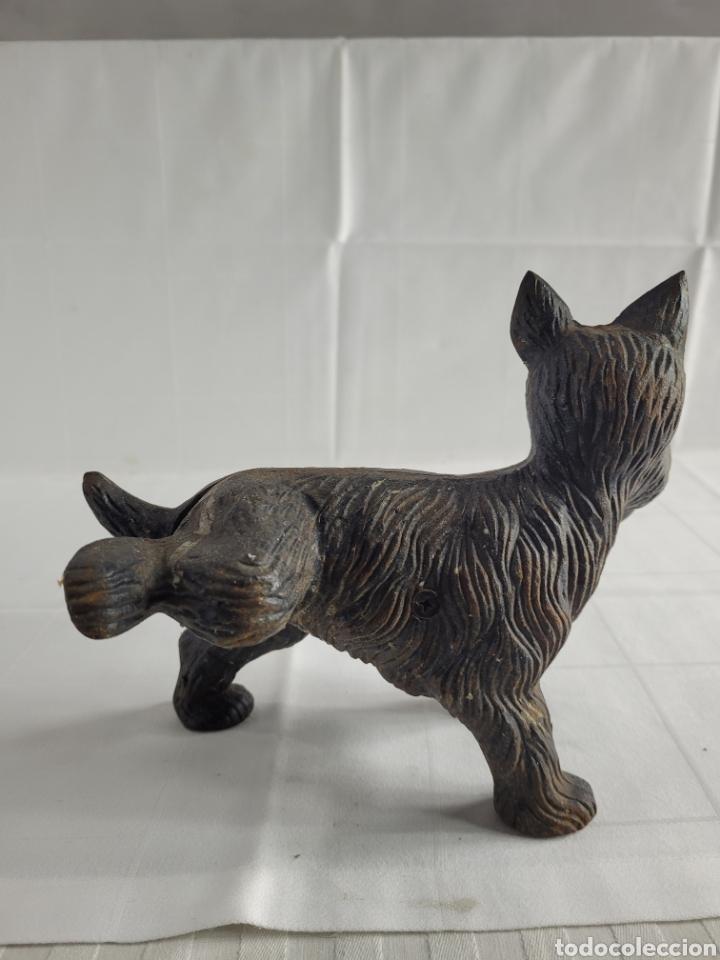 Antigüedades: Terrier sujeta Puertas año aprox 1940 - Foto 4 - 254742615