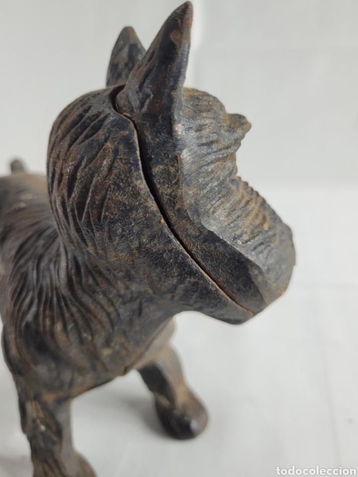 Antigüedades: Terrier sujeta Puertas año aprox 1940 - Foto 6 - 254742615