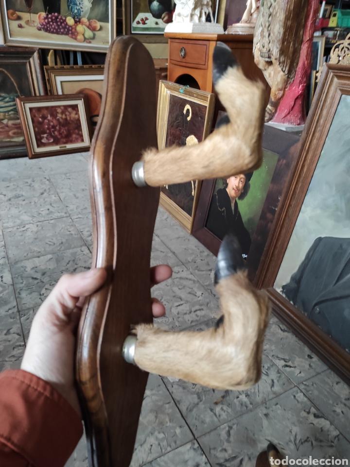Antigüedades: Pareja de percheros de caza, patas de corzo? - Foto 5 - 254755845