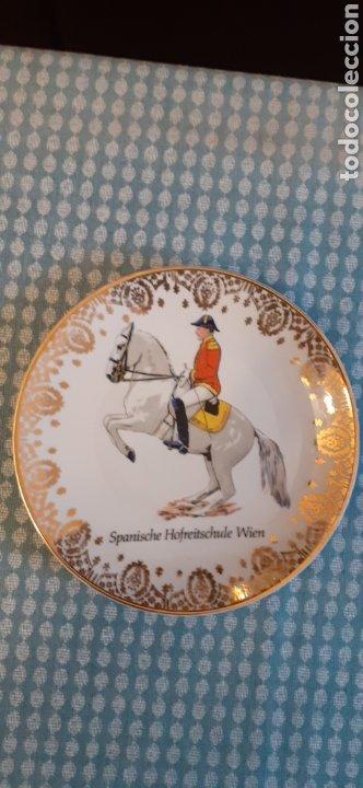 PLATO DE PORCELANA, TIRSCHENREUTH BAVARIA, 19,5 CM (Antigüedades - Porcelanas y Cerámicas - Otras)