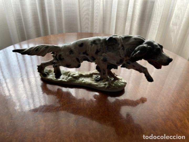 PRECIOSO PERRO SETTER ALTO PORCELANA ALGORA DE LA COLA AL OCICO 35CM (Antigüedades - Porcelanas y Cerámicas - Algora)