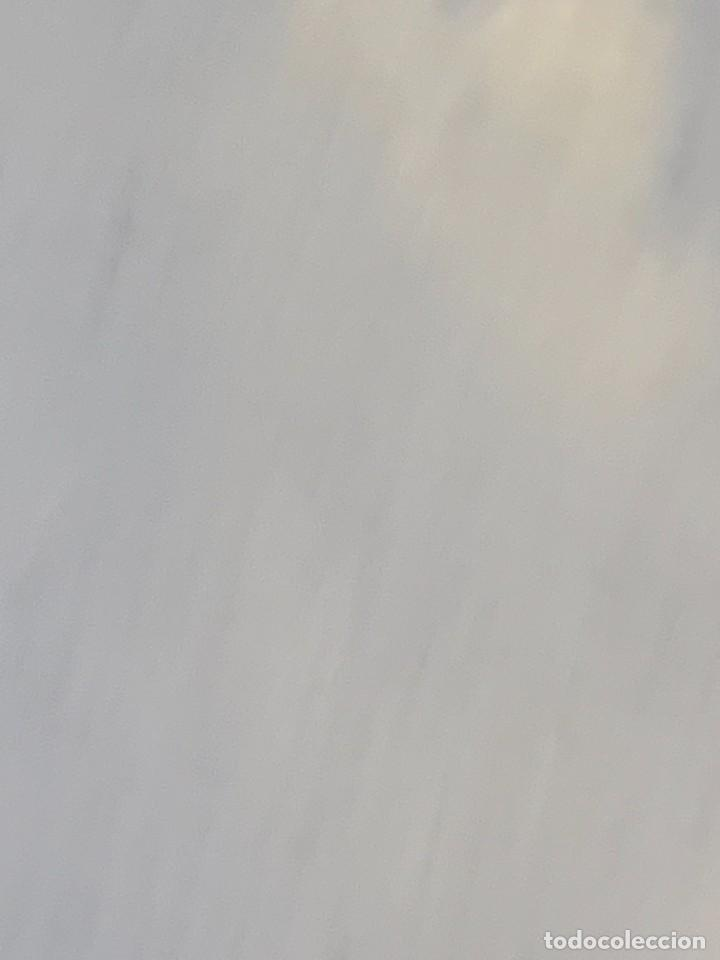 Antigüedades: PLATO PICKMAN SEVILLA CARTUJA DOS PERICOS CARIGUALDOS PLATYCERCUS ICTEROTIS JIMENEZ 1956 4X39CMS - Foto 20 - 255516630