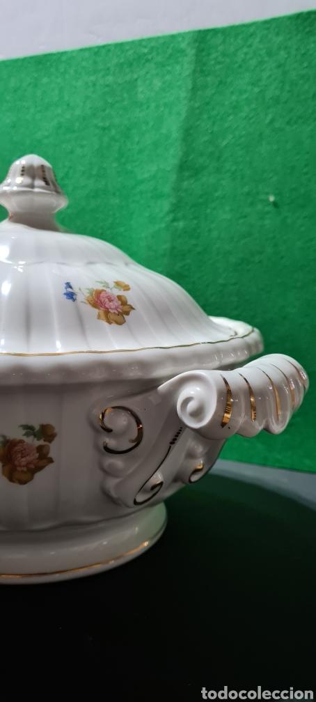 Antigüedades: Preciosa sopera de cerámi con sello en la base. De motivos florales y bordes dorados. Muy elegante. - Foto 5 - 255989680