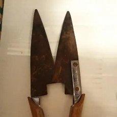 Antigüedades: ANTIGUA TIJERA DE ESQUILAR MARCA STAINLESS STEEL. Lote 256049710